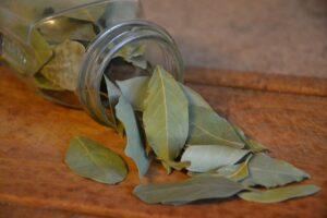 leaves in jar